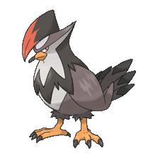 The Two Best Pokemon Of Each Type Staraptor398